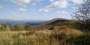Peters Mt. Symms Meadow 10.15